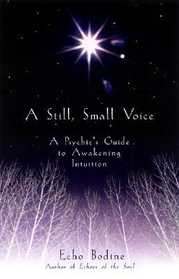 A Still, Small Voice By Bodine, Echo L.